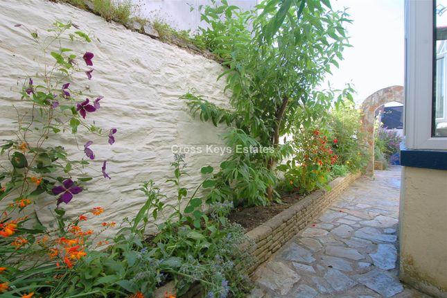 Courtyard Garden of Palmerston Street, Stoke, Plymouth PL1