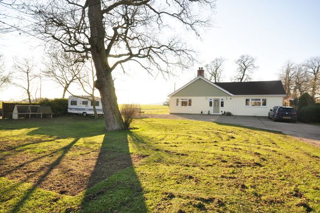 Thumbnail Detached bungalow for sale in Long Green, Wortham, Diss