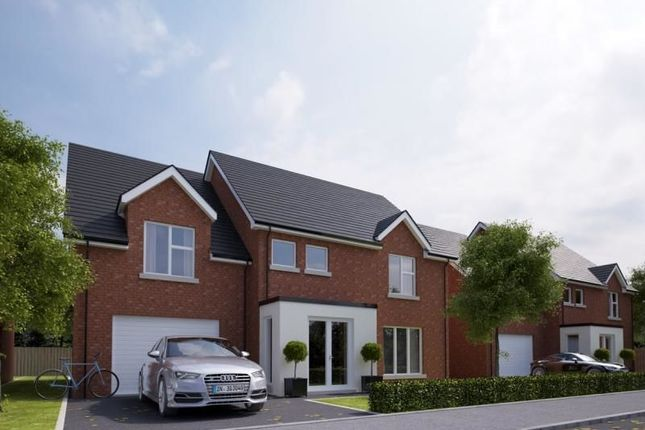 Thumbnail Detached house for sale in Belfry View, Doagh Road, Newtownabbey