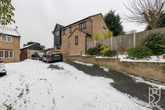 Thumbnail Detached house for sale in Burrows Close, Lawford, Manningtree
