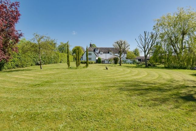 Thumbnail Detached house for sale in Top Road, Wimbish, Saffron Walden