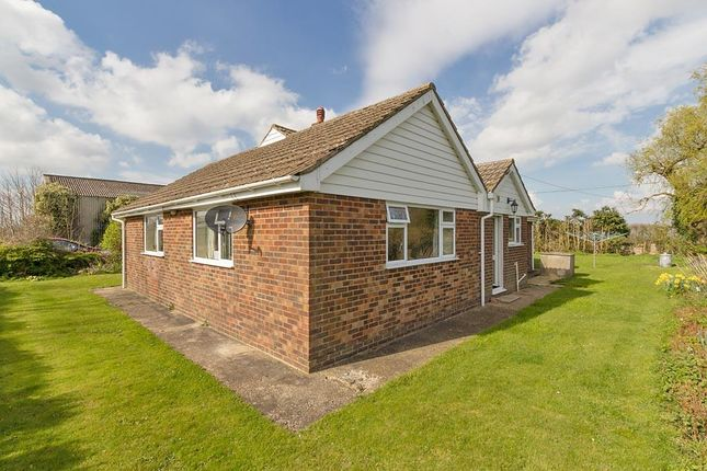 Thumbnail Property to rent in The Street, Frinsted, Sittingbourne