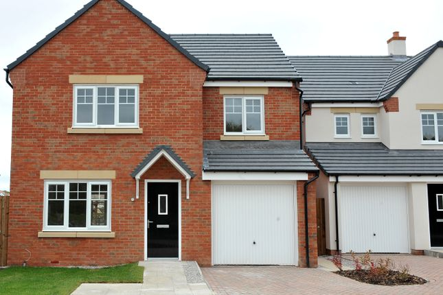 """Thumbnail Detached house for sale in """"The Roseberry"""" at Windsor Way, Carlisle"""