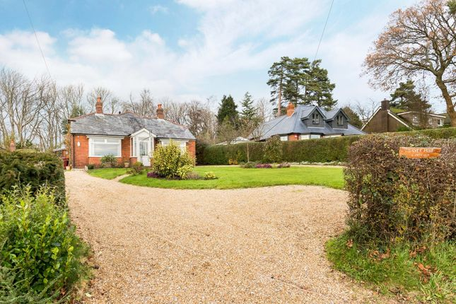 Thumbnail Property to rent in Forestside, Rowland's Castle