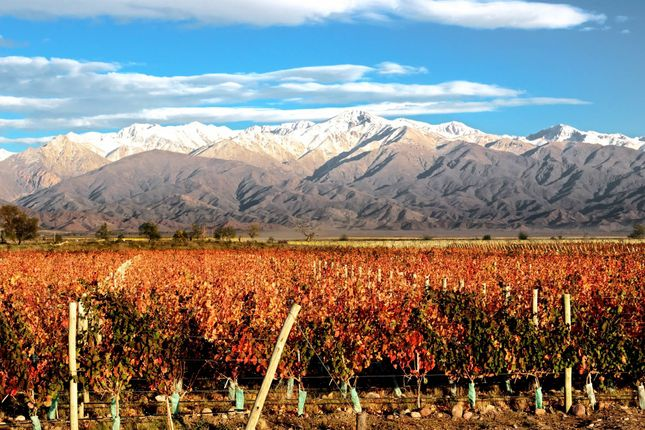 Land for sale in Mendoza, Uco Valley, Argentina