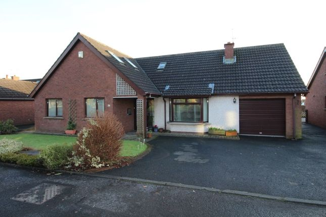 Thumbnail Detached house for sale in Harwood Gardens, Carrickfergus