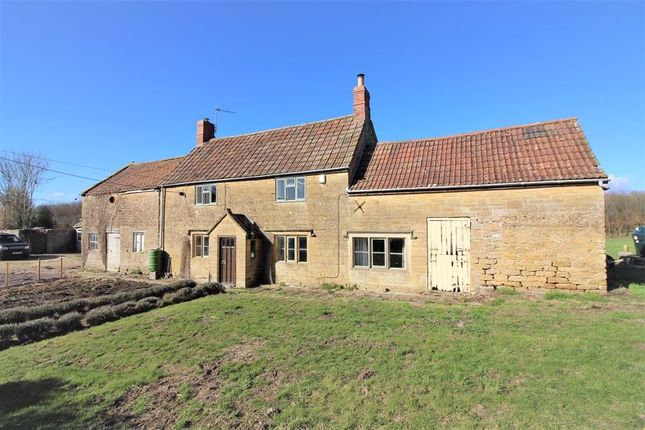 Thumbnail Detached house for sale in Watergore, South Petherton
