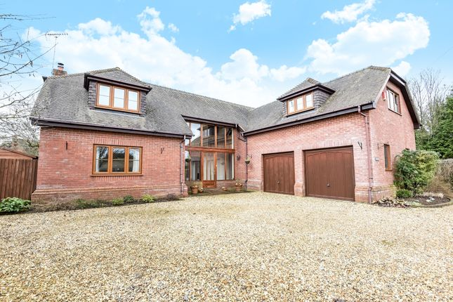 Thumbnail Detached house to rent in Barton Stacey, Winchester