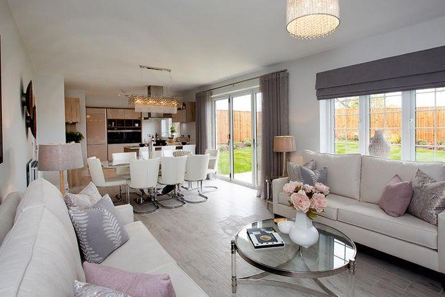 "Thumbnail Detached house for sale in ""The Kirkham"" at Boroughbridge Road, Knaresborough"