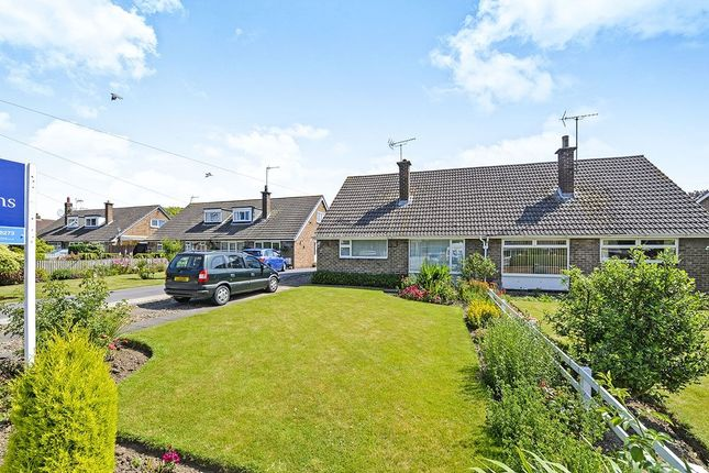 Thumbnail Bungalow for sale in Wharram Field, Beeford, Driffield