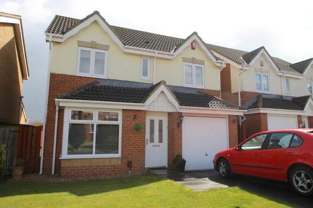 Thumbnail Detached house to rent in Bluebell Close, Gateshead