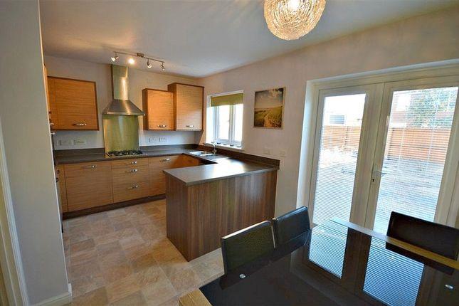 Thumbnail Semi-detached house to rent in Parc Panteg, Griffithstown, Pontypool