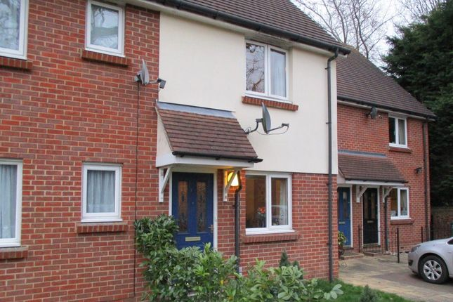 Thumbnail Detached house to rent in Rana Drive, Braintree