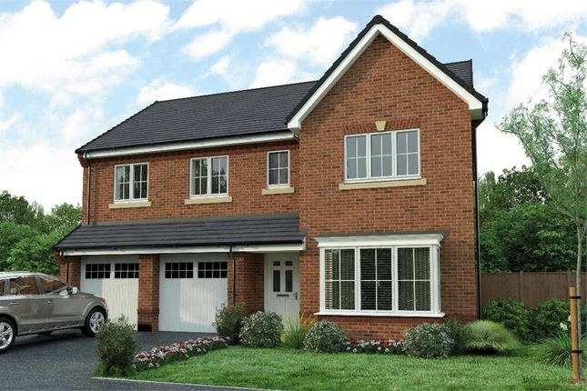 """Thumbnail Detached house for sale in """"The Buttermere"""" at Low Lane, Acklam, Middlesbrough"""