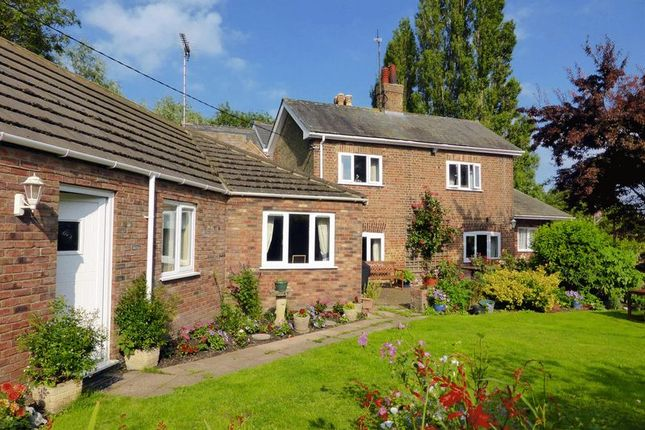 Thumbnail Country house for sale in Black Lane, Tydd St Giles, Cambridgeshire
