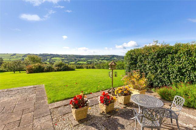 Terrace of Northleigh, Colyton, Devon EX24