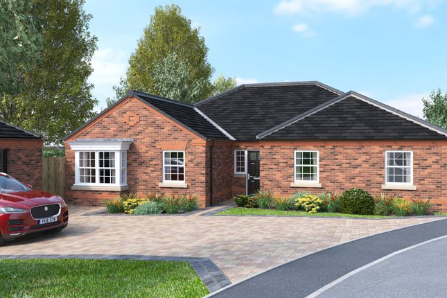 Thumbnail Detached bungalow for sale in The Windsor, Folly Nook Lane, Ranskill, Retford, Nottinghamshire