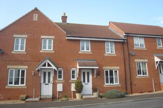 Thumbnail Terraced house to rent in Salterton Court, Exmouth, Devon