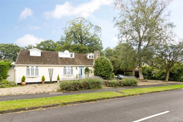 Thumbnail Detached house for sale in Sycamore Avenue, Chandler's Ford, Hampshire