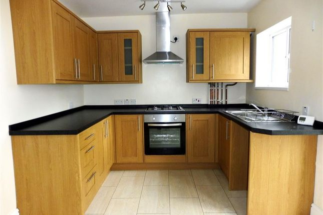 Thumbnail Property to rent in Berry Road, Paignton