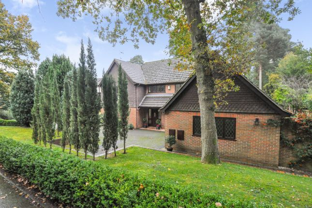 Thumbnail Detached house for sale in Hollybush Ride, Finchampstead