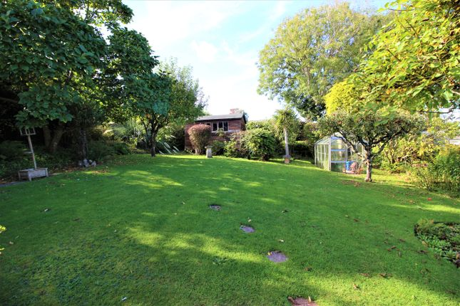Thumbnail Detached bungalow for sale in Berkeley Rise, Torquay