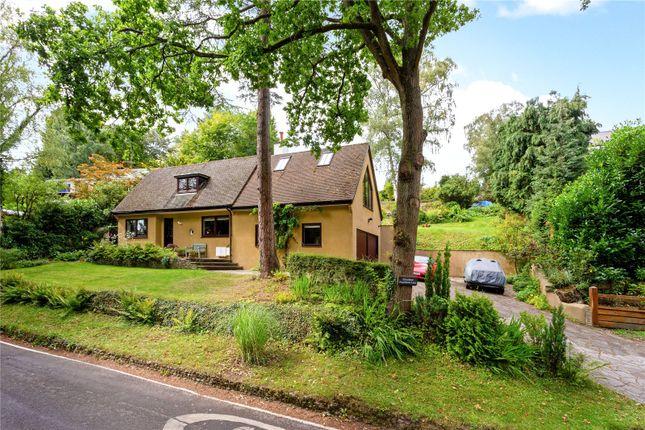 Picture No. 06 of Punchbowl Lane, Dorking, Surrey RH5