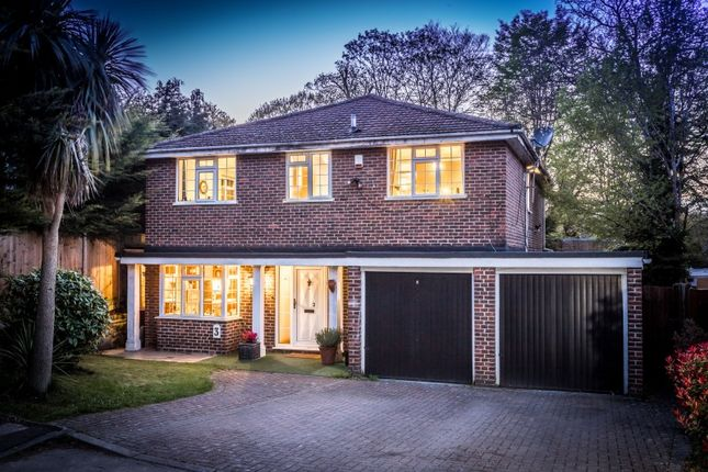 Thumbnail Detached house for sale in Robinwood Place, London