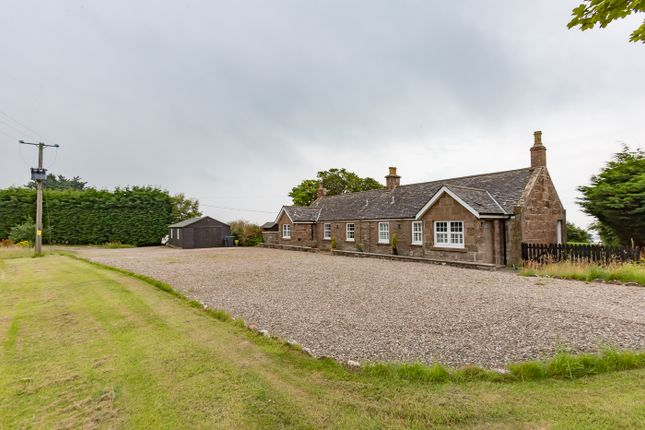 Thumbnail Cottage for sale in Warburton Heights, St Cyrus, Montrose