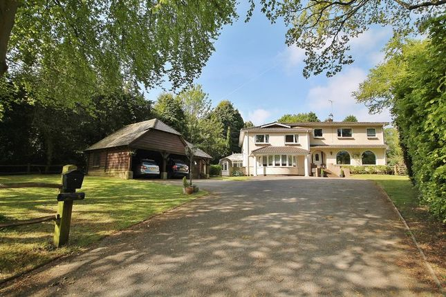Thumbnail Detached house for sale in Threals Lane, West Chiltington, Pulborough