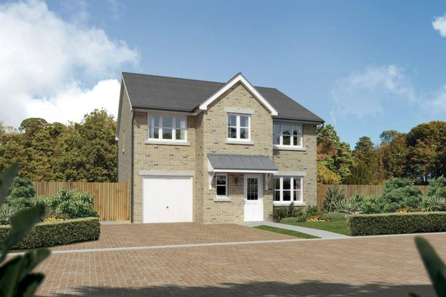 "Thumbnail Detached house for sale in ""Heddon"" at Cherrytree Gardens, Bishopton"