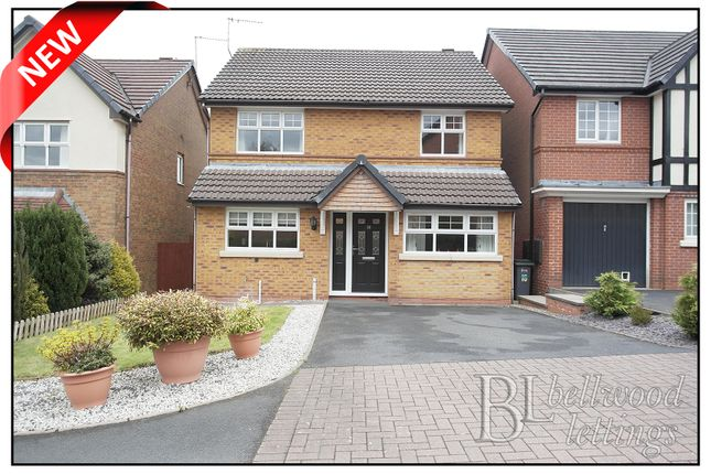 Thumbnail Detached house to rent in Princetown Close, Meir Park Stoke On Trent