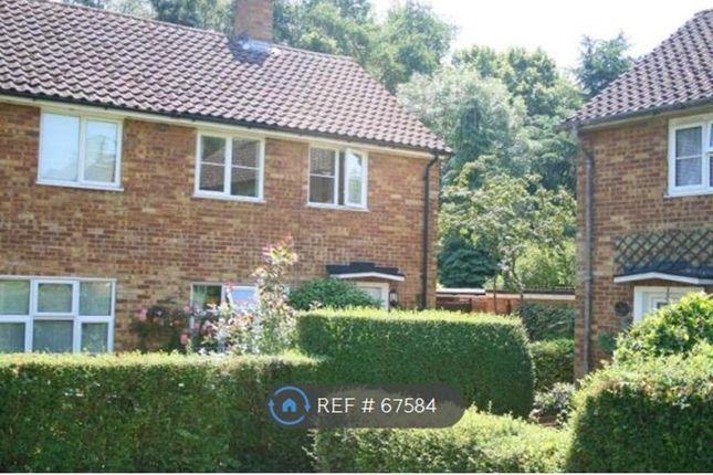 Thumbnail Semi-detached house to rent in Little Dell, Welwyn Garden City