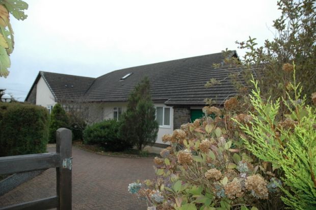 Thumbnail Detached bungalow for sale in Tanglwst, Newcastle Emlyn, Carmarthenshire