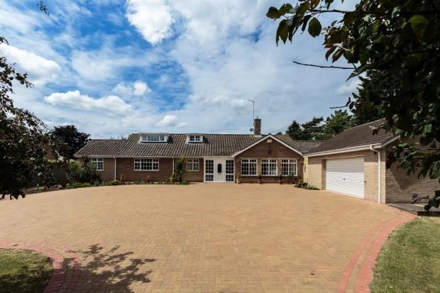 Thumbnail Detached bungalow for sale in 252 Thorpe Road, Longthorpe, Peterborough