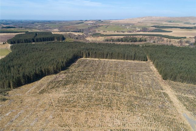Thumbnail Land for sale in Lot 4 Upper Heilar Forest, Sorn, Mauchline, East Ayrshire