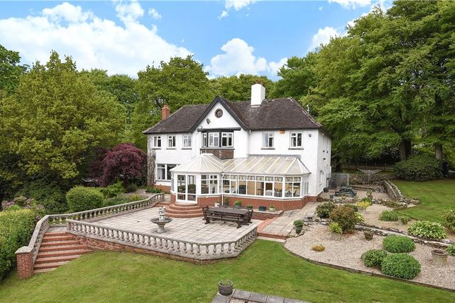 Thumbnail Equestrian property for sale in Wambrook, Chard, Somerset