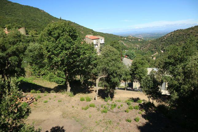 Thumbnail Land for sale in Sorède, Pyrénées-Orientales, Languedoc-Roussillon