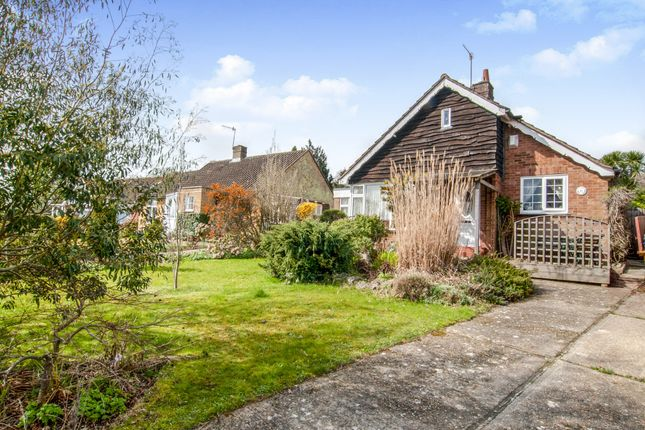 Thumbnail Detached bungalow for sale in Wishingtree Close, St. Leonards-On-Sea