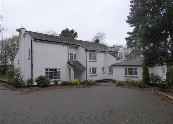 Thumbnail Detached house to rent in Kirkstone House, Pex Hill, Widnes
