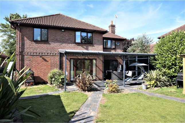 Thumbnail Detached house for sale in Barnoldby Road, Waltham
