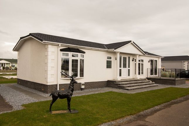 Thumbnail Detached house for sale in Barry, Carnoustie
