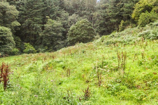 Land for sale in Fields Above Pen-Draw'r Garth, Garth, Glyn Ceiriog LL20