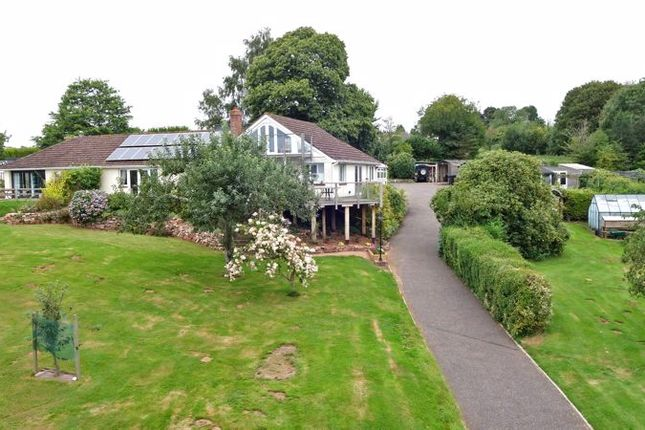 Thumbnail Detached bungalow for sale in Tipton St. John, Sidmouth
