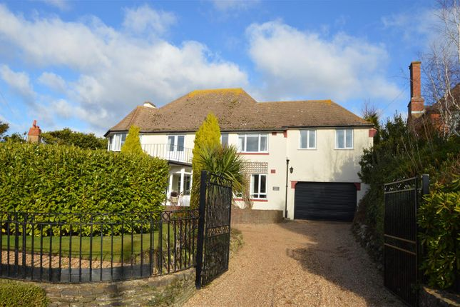 Thumbnail Detached house for sale in Clavering Walk, Bexhill-On-Sea