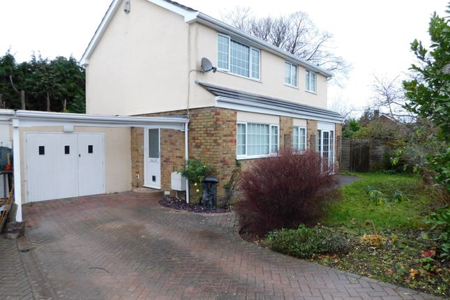 Thumbnail Detached house to rent in Forest Meadows, Hythe