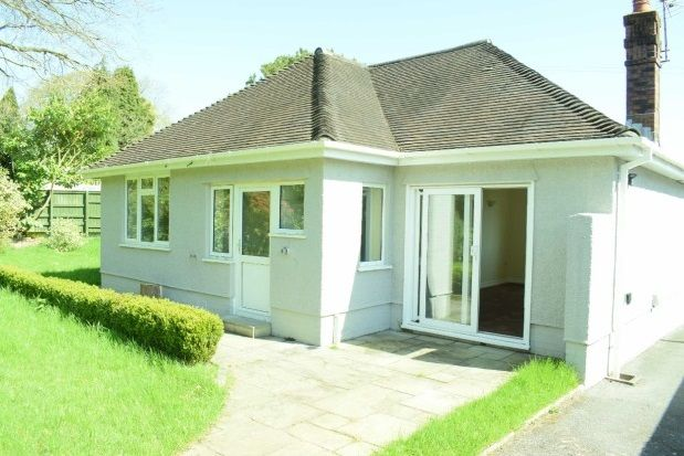 Thumbnail Detached bungalow to rent in Emmanuel Gardens, Sketty, Swansea