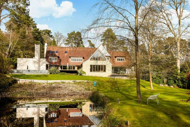 Thumbnail Detached house for sale in Fireball Hill, Ascot