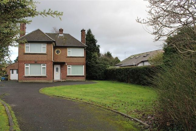 Thumbnail Detached house for sale in Armagh Road, Newry
