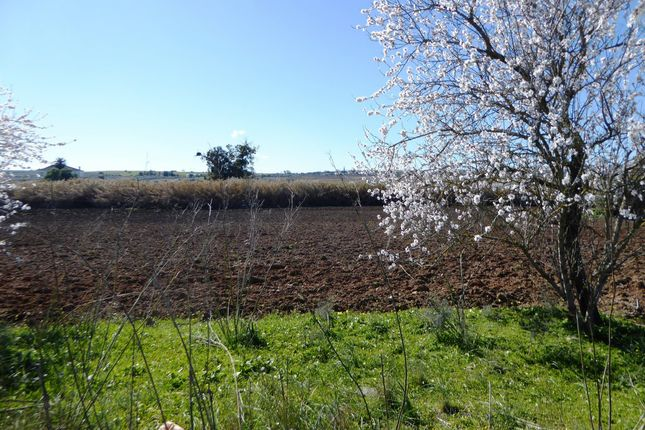 Thumbnail Country house for sale in House In Ruins With Land, Beja, Alentejo, Beja (City), Beja, Alentejo, Portugal